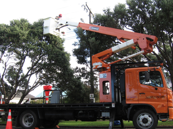 commercial powerline pruning-163