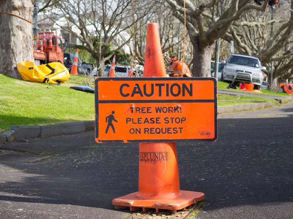 Road Cone with Safety Message